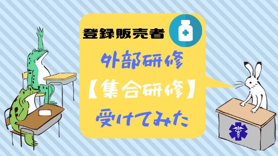 ティング 研修 外部 パイロ ネット